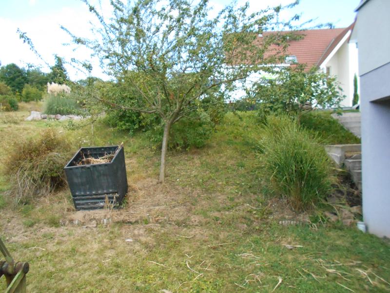 Création d\'un jardin contemporain – Wirth Paysage