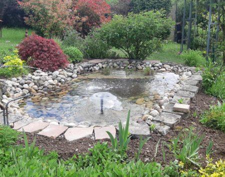 Rénovation d'un bassin